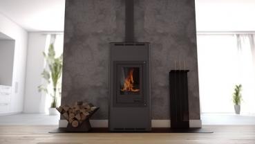 wasserf hrender kaminofen aquaflam basic schwarz 12 kw. Black Bedroom Furniture Sets. Home Design Ideas